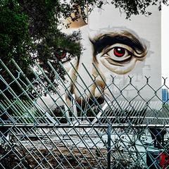 Eyes Fence