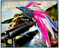 Alaska Fliege