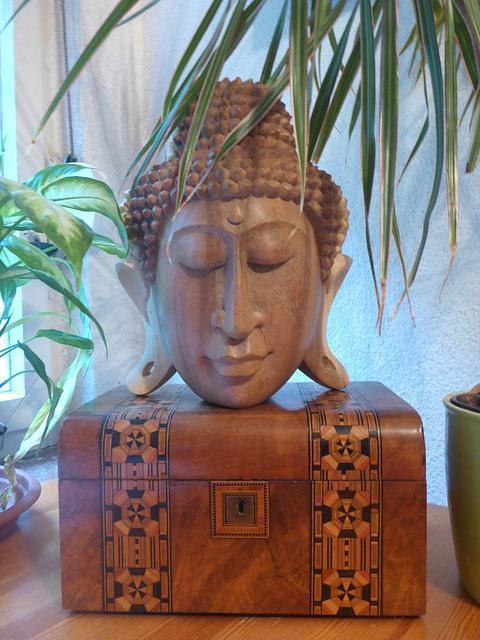 Buddha - 'Erwachter' - 'vekiĝulo'