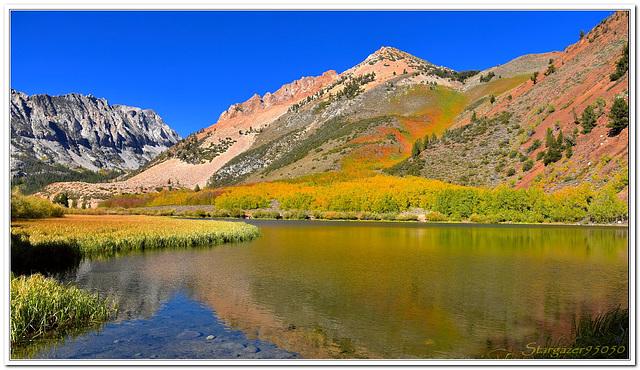 Fall Colors in the Sierra Nevada