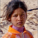 i beduini fanno figli belli come i nostri !