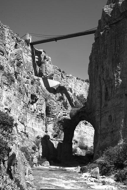 Arch&Sidi msid