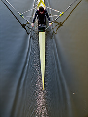 the lonely sculler II