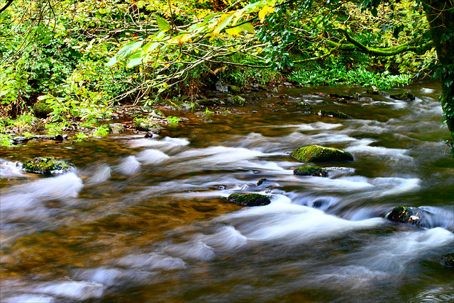 The River Colligan, Waterford, Ireland. 2