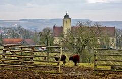 Die Hallburg, eine uralte Höhenburg - The Hallburg, an ancient mountain castle