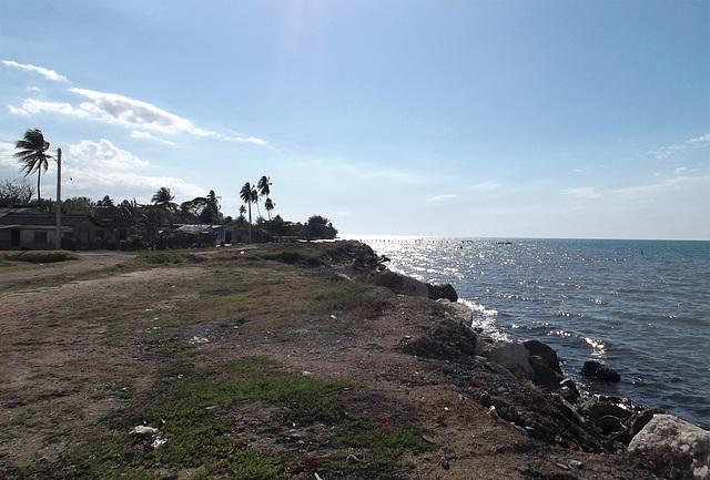 Rivage rayonnant / Radiant shoreline