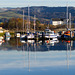 Boats Moored at Sandpoint Marina, River Leven, Dumbarton