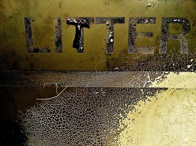 Burnt Litter 1
