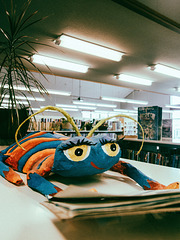 Library Bug