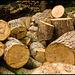 Chopped logs