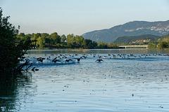 Le lac du Lit du Roi