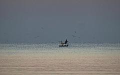Le temps de la pêche [ON EXPLORE]