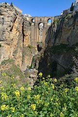 Spain - Ronda, Puente Nuevo