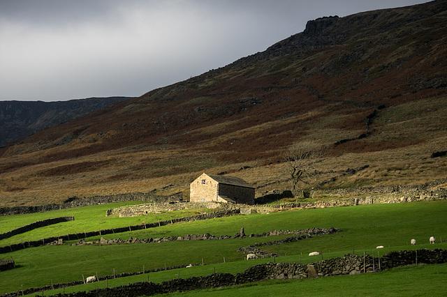 An irresistible Field Barn