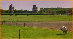 Castle & Ruïn Montfort