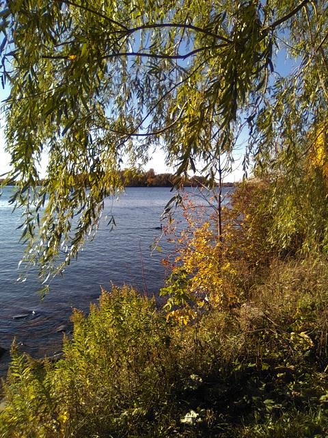 Scène automnale / Autumn scenery (2) (Québec)
