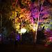 Herbstleuchten im Inselpark Wilhelmsburg