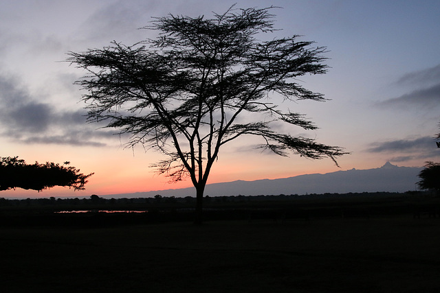 View of Mt. Kenya from Ol Pejeta Conservancy, Kenya