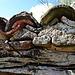 Holz, Steine, Dachziegel