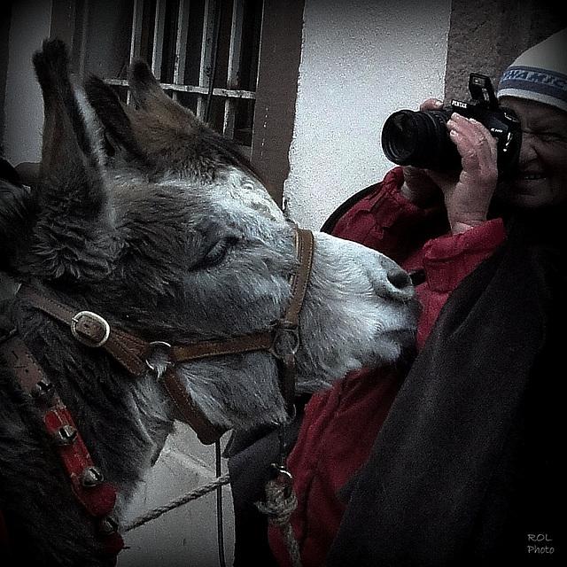 J'aime tous mes ami(e)s photographes,(I love you all my photographs friends)