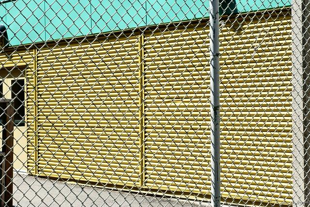 Happy Fence Friday 3