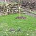:-) Einen grünen Gruß - verdan saluton el Elbvalo :-)