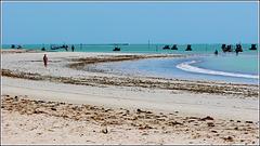 Maceio : la grande spiaggia di Puaripeira