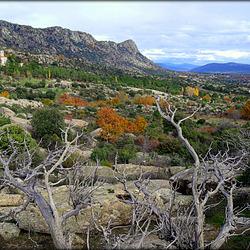 Autumn in La Sierra de La Cabrera