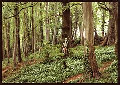 skeleton in the woods