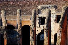 Steingerippe im Coloseo