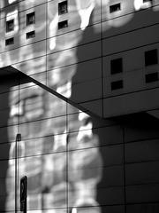 Paris - mur chattoyant