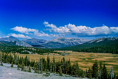 Tuolumne Meadows from Pothole Dome - Sept. 1978 (090°)