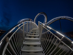 Tiger and Turtle....