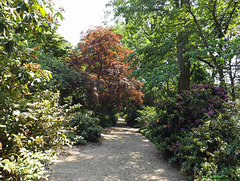 Garden Path at Planting Fields, May 2012