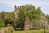 Ruines de l'abbaye de Nesle-la-Reposte - Marne