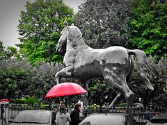 Leonardos Pferd (2x PIP)