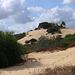 Sand dunes of Caesarea