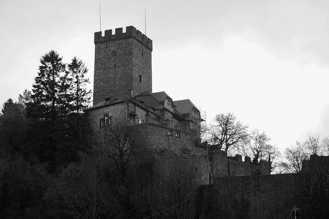 Burg Kerpen DSCN0010
