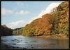 autumn in Budshead Creek
