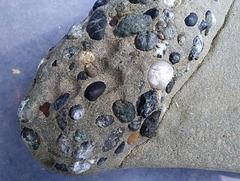 Stones in stone