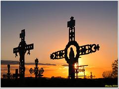 Ombres chinoises au cimetière