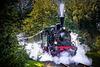 Eisenbahnfreunde Hasetal