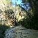 Walking the river Chilar.. Nerja.