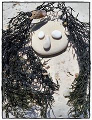 Meerjungfrau am Conero - la sirena al conero