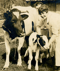 Fancy Cow and Calf (Cropped)