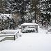 20210207 9907CPw [D~LIP] Wintereinbruch, Bad Salzuflen