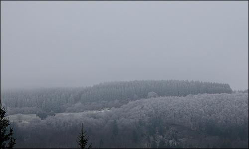brouillard givrant -matin glacé