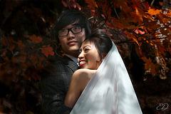 Les mariés de l'automne