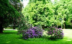 DE - Bad Neuenahr - Auguste-Viktoria-Park