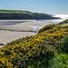 Pretty Bay, Anglesey1